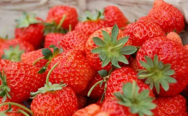 蕪湖周邊最新采摘草莓地點一覽(附聯系方式)
