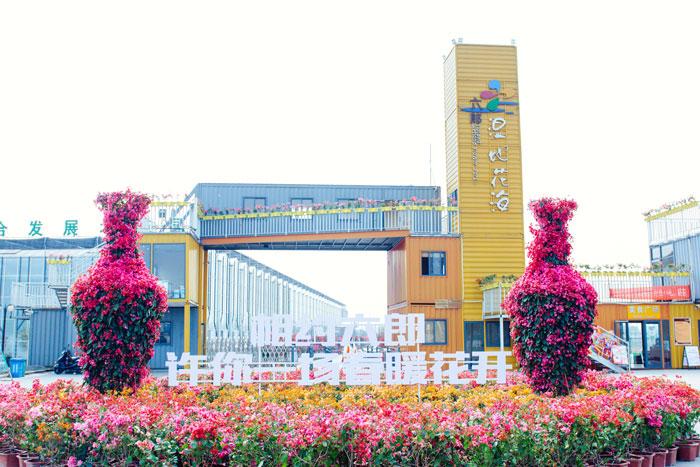 芜湖六郎湿地花海好玩吗?2019年最新门票价格+攻略(春游推荐)